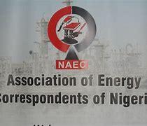 Barkindo, Kyari, others to speak at Nigeria's energy correspondents 2021 conference